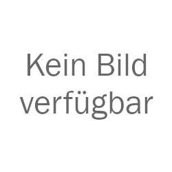 Transatlantik Schweiß-Ladetechnik e.K.